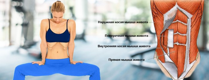 Вакуумные упражнения для похудения живота для женщин, девушек. Результаты, фото до и после
