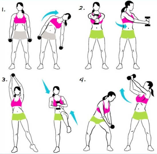 Как накачать руки девушке в домашних условиях и тренажерном зале. Программа тренировок