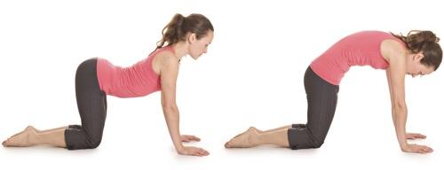 Упражнения на растяжку мышц ног в домашних условиях для шпагата, силовой тренировки, фитнеса
