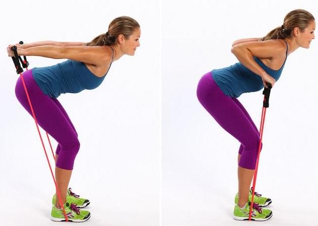 Базовые упражнения для девушек на плечи с собственным весом, гантелями, штангой, гирей, эспандером, в домашних условиях и тренажерном зале