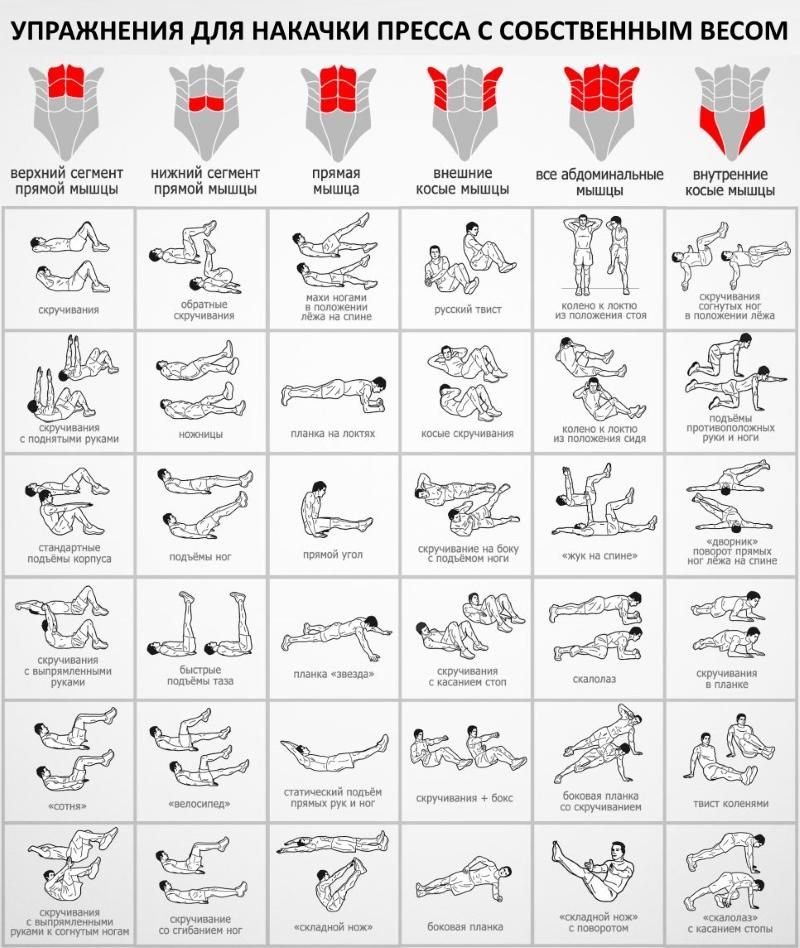 Программа для прокачки пресса в домашних условиях и спортзале для девушек и мужчин. Таблица упражнений тренировки