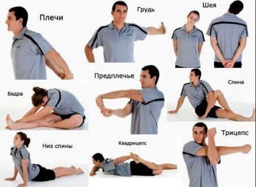 Фитнес центр world class уфа работа