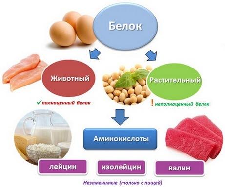 Питание для набора мышечной массы для женщин. Меню на каждый день недели, продукты в спортивном питании