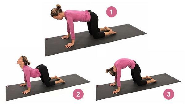 Упражнения на растяжку и гибкость всего тела, спины и позвоночника, на шпагат в домашних условиях
