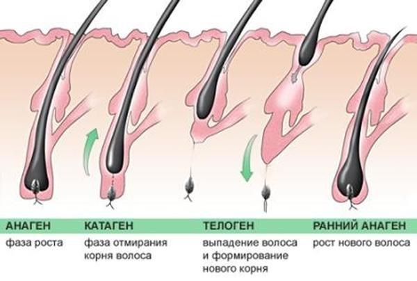Как остановить выпадение волос у женщин. Причины после родов, при грудном вскармливании, после 40. Витамины, диета, лечение в домашних условиях