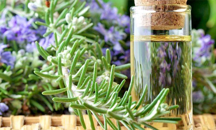 Эфирное масло чайного дерева, свойства. Применение для волос, зубов, кожи лица. При молочнице, грибке ногтей, от прыщей, бородавок, папиллом, внутрь