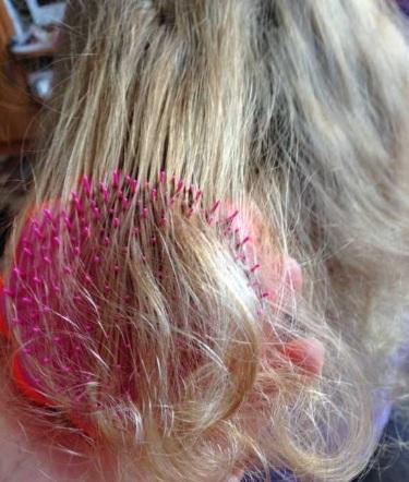 Расческа Tangle Teezer для волос - описание, отзывы. Как отличить подделку от оригинала. Цена и где купить