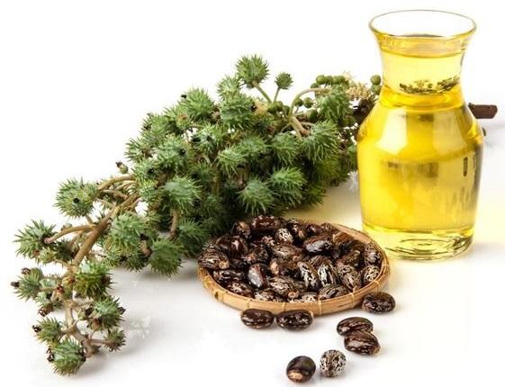 Средства для роста ресниц в аптеках: масла, сыворотки, биогель. Как укрепить ресницы и улучшить их рост