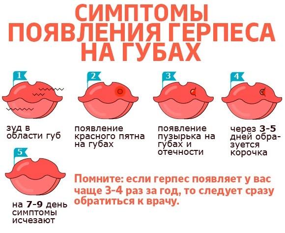 Масло чистотела. Свойства и применение при кожных и грибковых заболеваниях, в косметологии, гинекологии