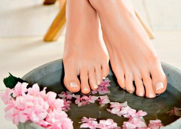 Эфирное масло герани. Свойства, польза и применение в косметологии и народной медицине. Как приготовить масло в домашних условиях