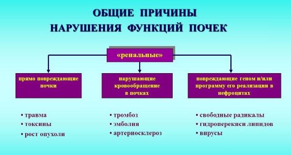 Стелланин мазь. Инструкция по применению, эффективность, отзывы, аналоги