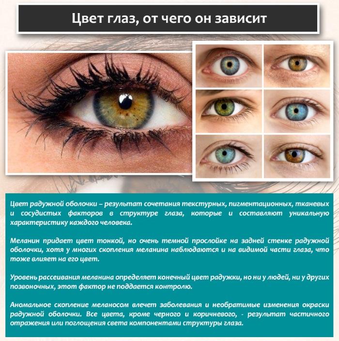 Как изменить цвет глаз. Какие бывают цвета, операция по изменению, капли с гормонами