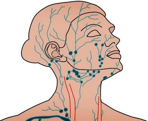 Лимфодренажный массаж лица и тела. Техника аппаратного и ручного, как сделать в домашних условиях