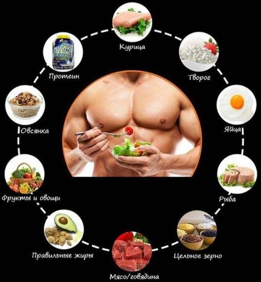 Самые белковые продукты питания. Список для похудения, набора веса, наращивания мышц, для беременных, вегетарианцев