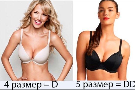 Красивая, большая, маленькая женская грудь. Типы, формы и размеры. Фото
