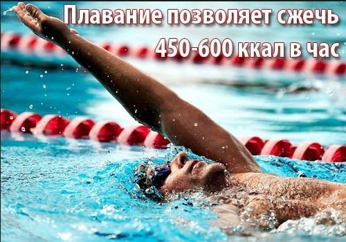 Польза плавания в бассейне для женщин, беременных, для здоровья, фигуры, позвоночника, похудения, иммунитета