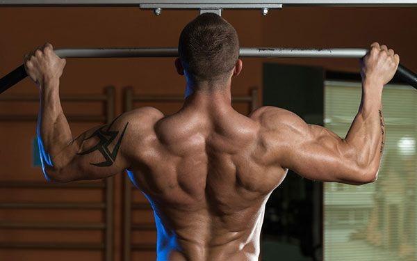 Тренировка спины в тренажерном зале. Упражнения для девушек, программа на накачку широчайших мышц спины