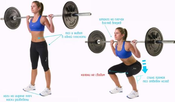 Базовые упражнения в тренажерном зале для девушек на все группы мышц, похудения