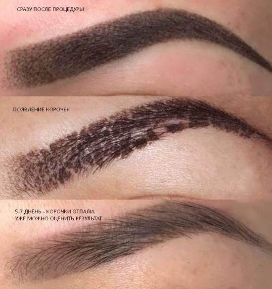 Перманентный макияж бровей, пудровое напыление. Фото до и после, сколько держится, заживление