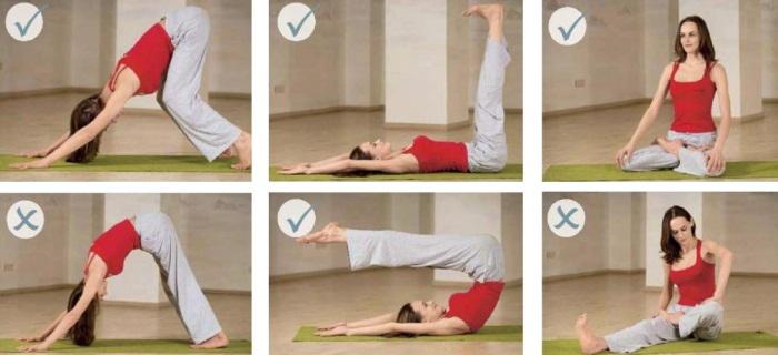 Йога для начинающих. Видео-уроки занятий в домашних условиях