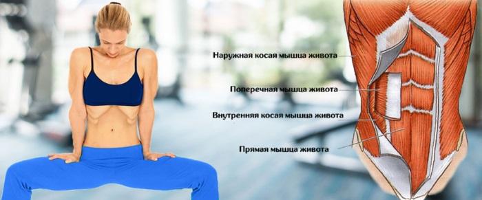 Вакуум живота для похудения. Как делать, польза и вред, отзывы,