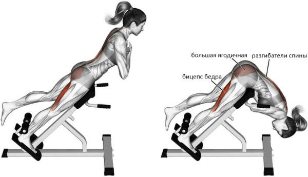 Гиперэкстензия - тренажер для спины, пресса, укрепления мышц позвоночника, техника выполнения