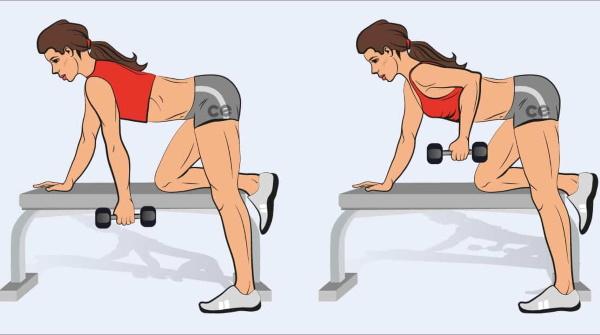 Упражнения для прокачки спины в домашних условиях, тренажерном зале