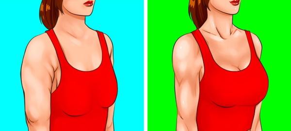Упражнение для грудных мышц для девушек: пуловер, с гантелями и другие. Программа в тренажёрном зале, домашних условиях