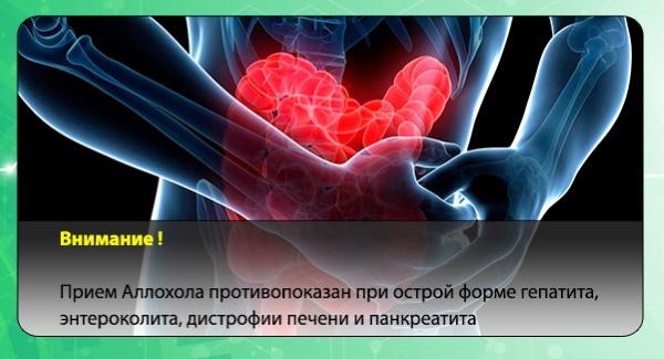 Аллохол (Allochol) для похудения. Как принимать правильно, инструкция по применению, схема приема