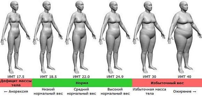 Нормальный вес при росте 150-155-160-165-170-175-180 у девушки. Таблица по возрасту