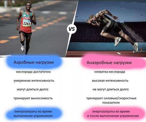 Аэробная выносливость это способность в физкультуре, виды спорта